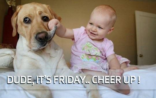Friday-Jokes
